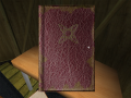 Journal in hut.png